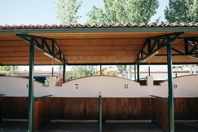 037_Boda-en-el-hipodromo-de-la-zarzuela_Fotografo-de-bodas-en-madrid_Alberto-Desna